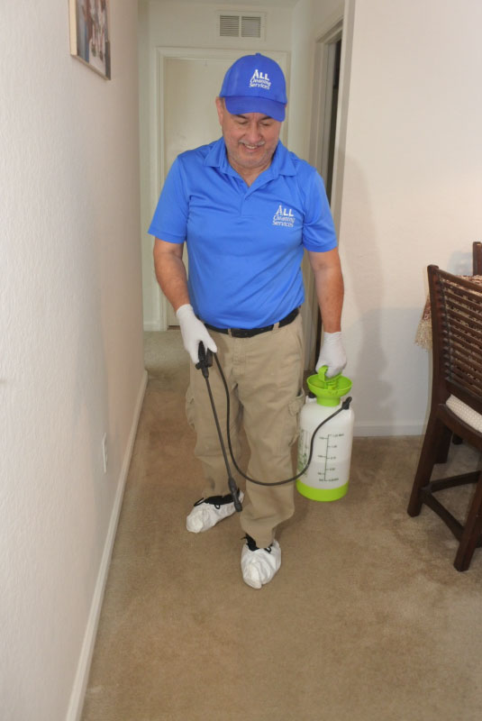 Carpet Cleaning with Chem Dry in Jacksonvile, Fl